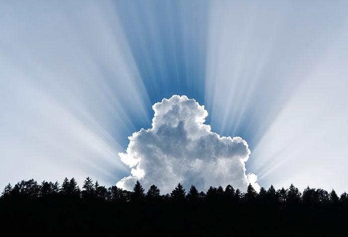 SaaS wird immer wichtiger - wir erklären die Vorteile der Cloud.