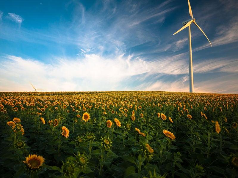 Auch saubere Energie sollte im Digitalisierungskonzept enthalten sein.