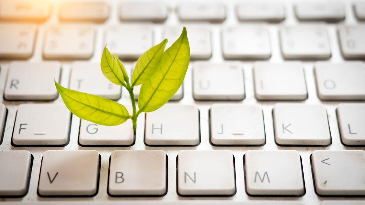 3 Tipps für nachhaltige Digitalisierung: der Schritt nach vorne für Unternehmen